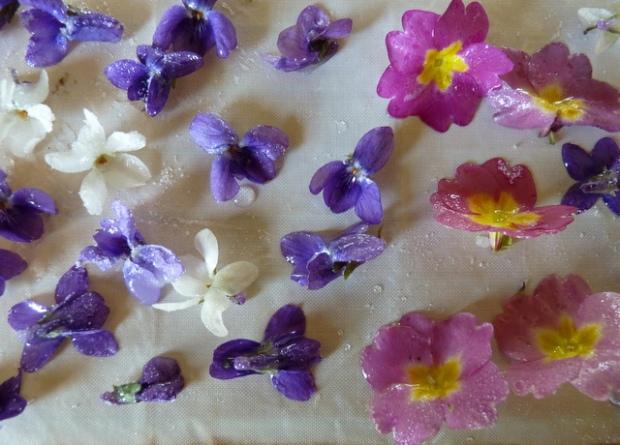 crystallised violets and polyanthus using the gum arabic method