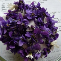 making violet liqueur