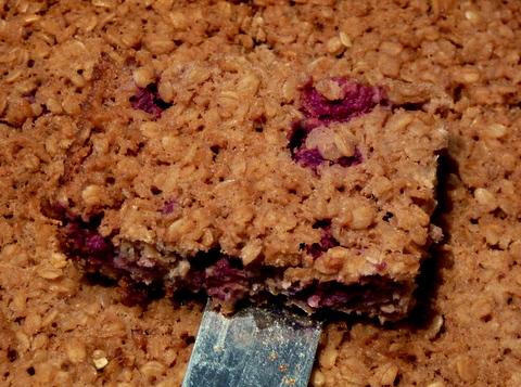 raspberry oat slice
