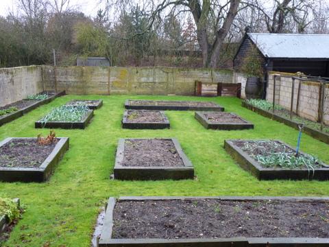 vegetable garden February