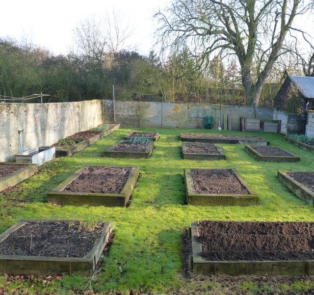 vegetable garden March