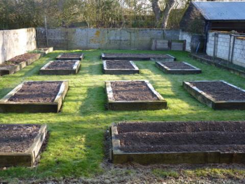 vegetable garden April