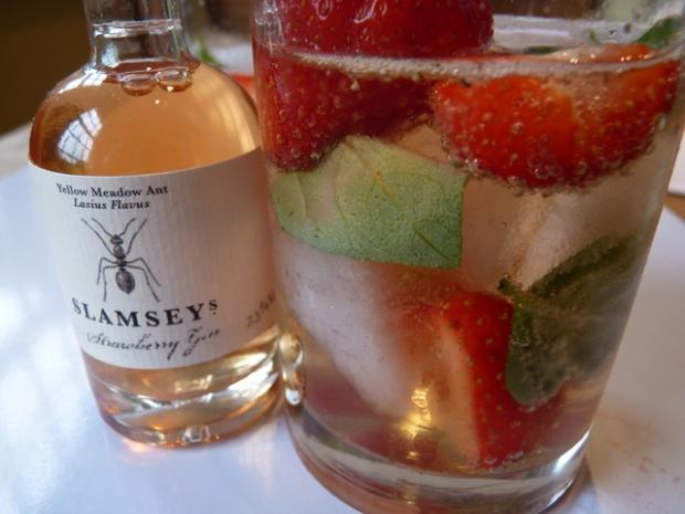 Slamseys Strawberry Gin