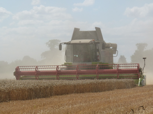 combining Far Blackley