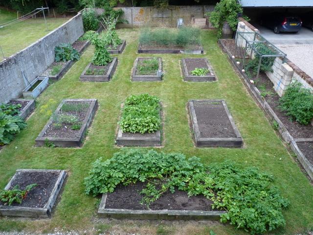 vegetable garden end July