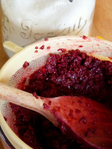 making blackberry jelly