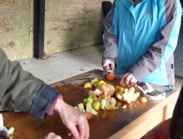 chopping apples for making juice