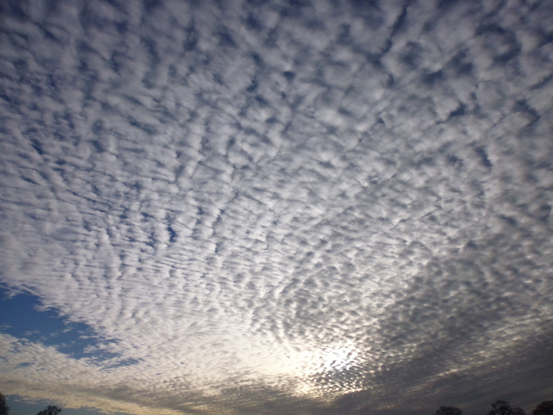 mackerel-sky