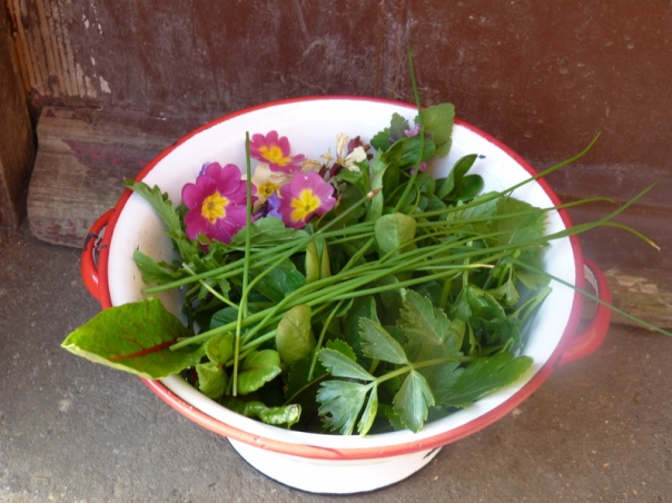 spring salad with flowers