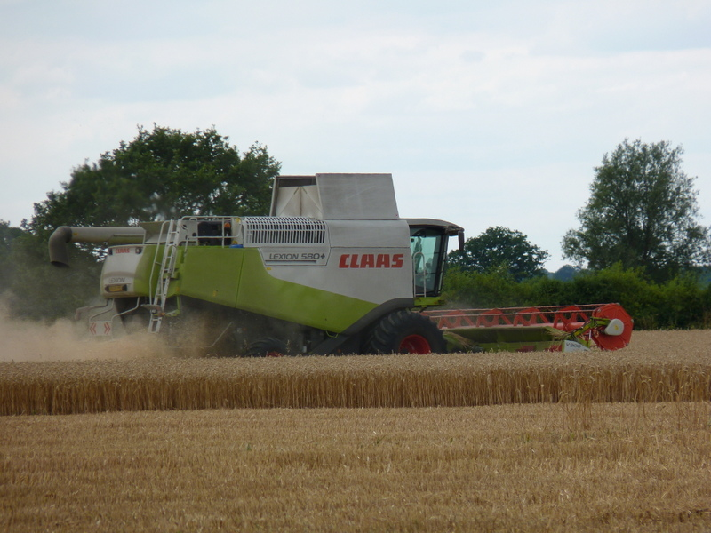 combine harvester in great forest field