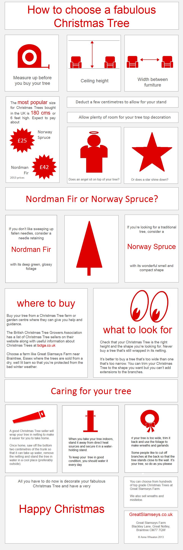 how to buy a fabulous Christmas tree