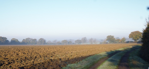 november morning across fields
