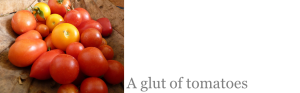 dealing with a glut of tomatoes
