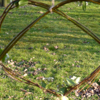 Make a heart shaped wreath