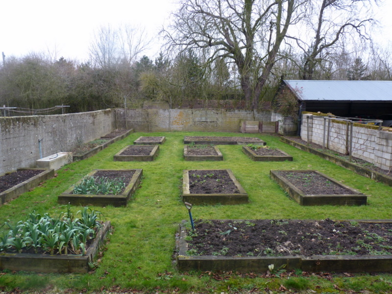vegetable garden March