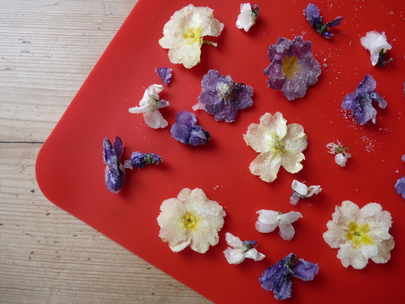 crystallised violets, polyanthus and blackthorn flowers