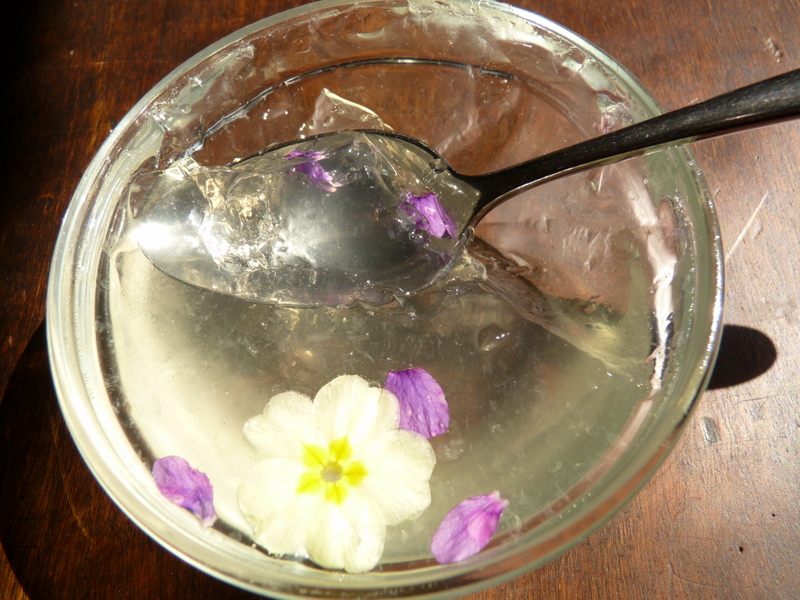 elderflower gin and tonic jelly