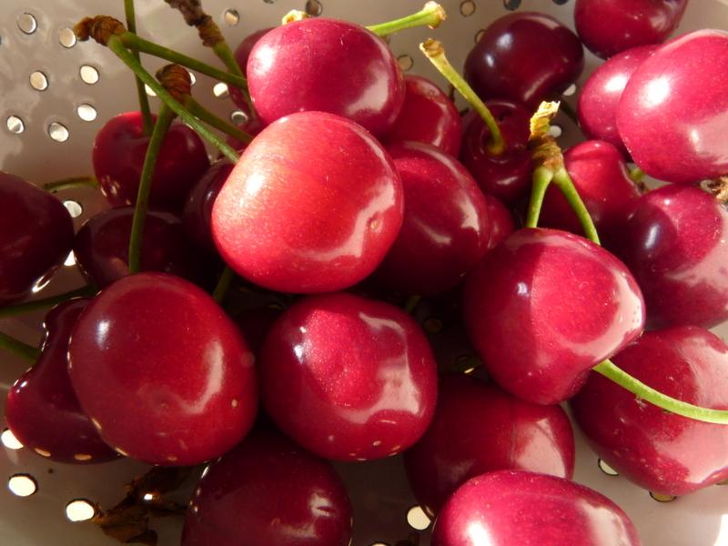 cherries from garden