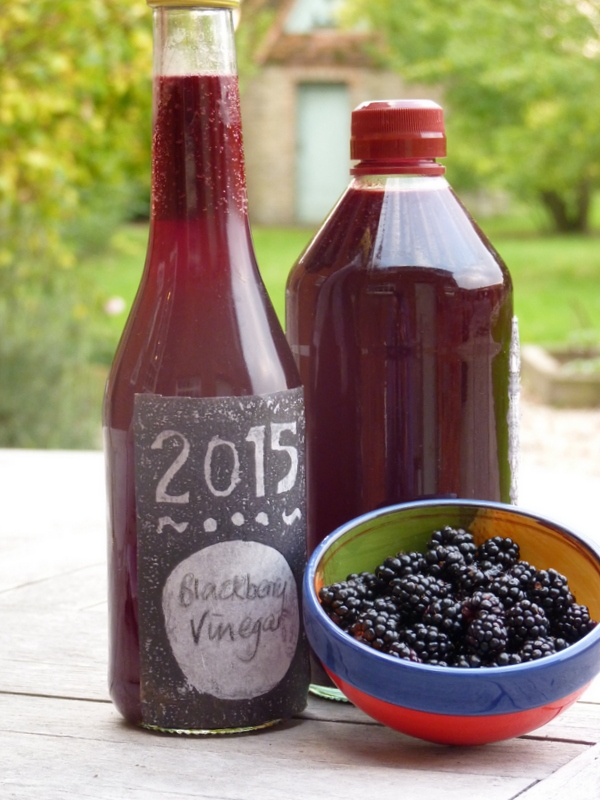 blackberry vinegar 2015