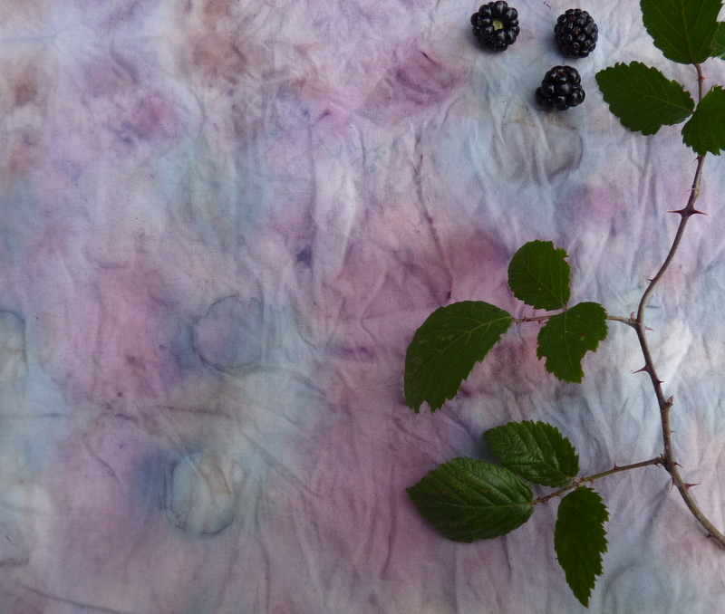 bundle dyeing brambles
