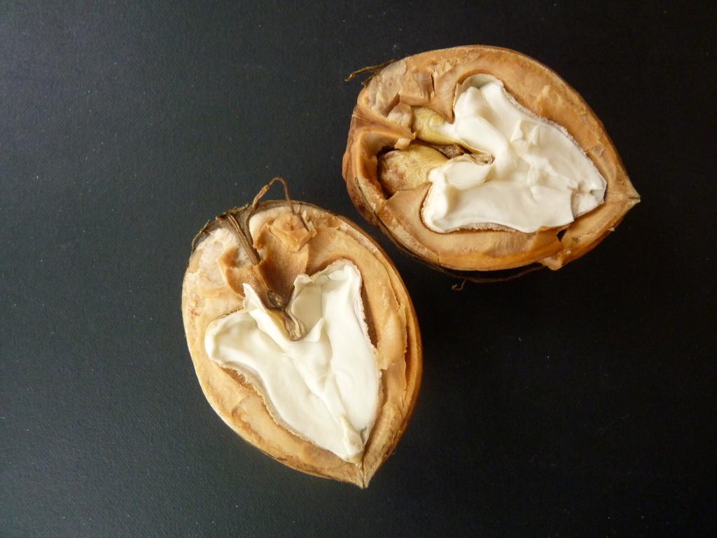 wet walnuts