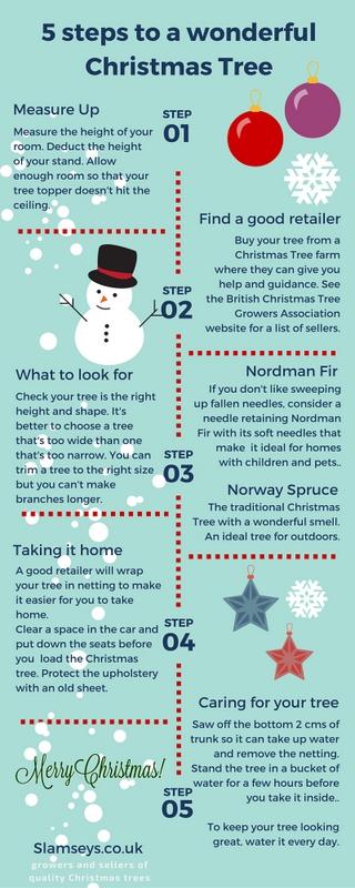 5 steps to a wonderful Christmas Tree