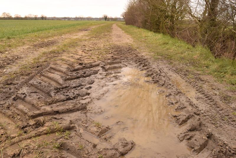 farm puddle