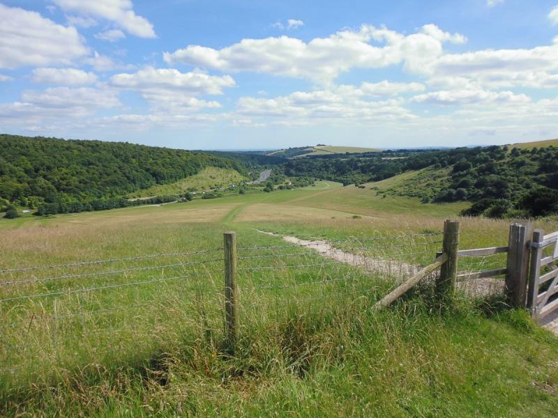 SDW Butser Hill