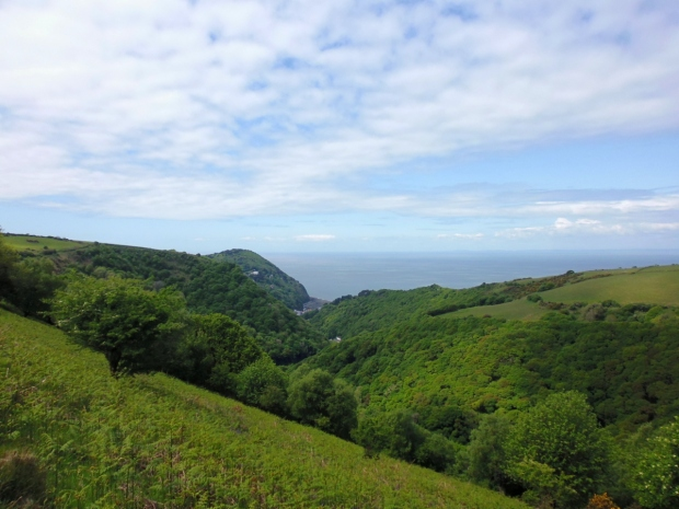 Lynmouth from 2 Moors Way