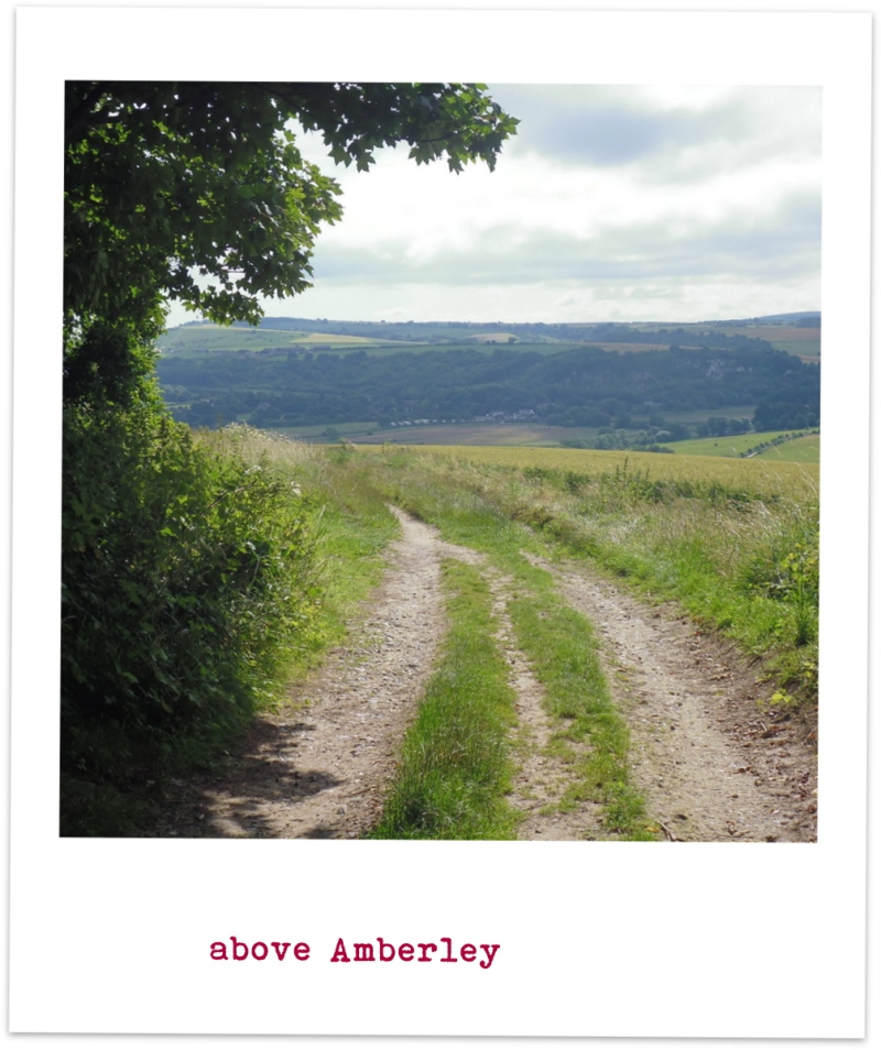 above Amberley on South Downs Way