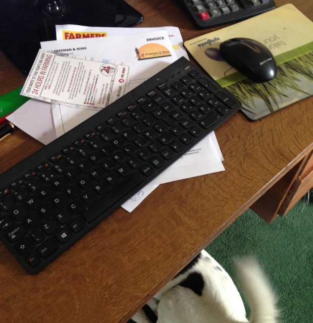 farm24 office work