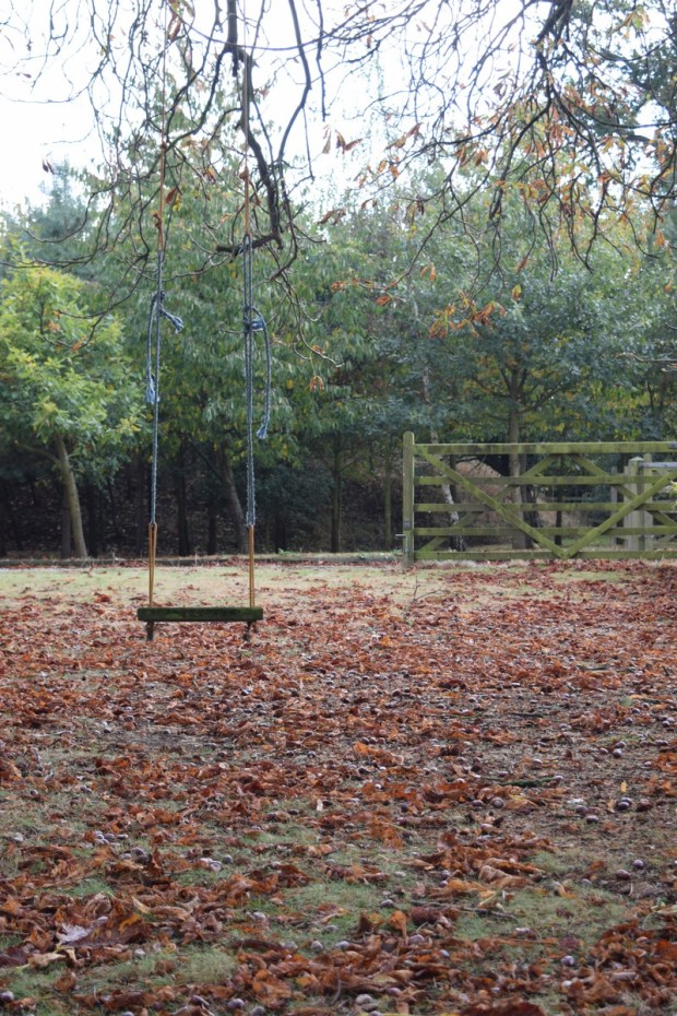 swing under the horse chestnut tree with autumn leaves