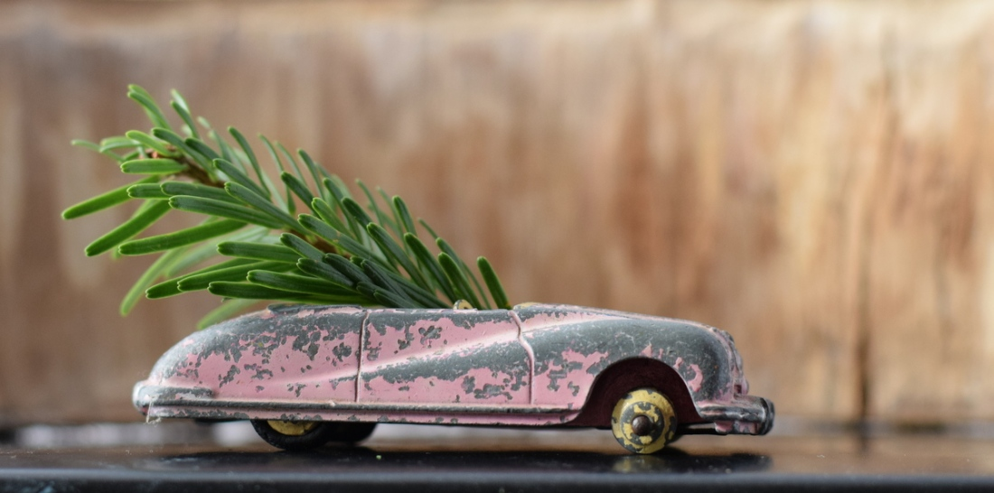 Christmas tree twig in toy car