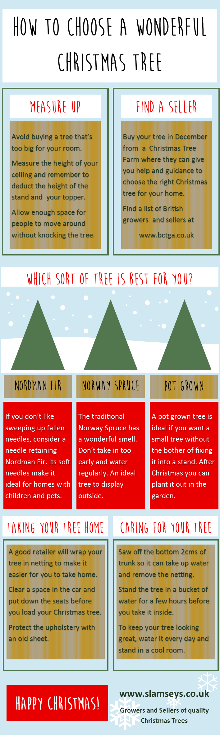 how to choose a wonderful Christmas tree