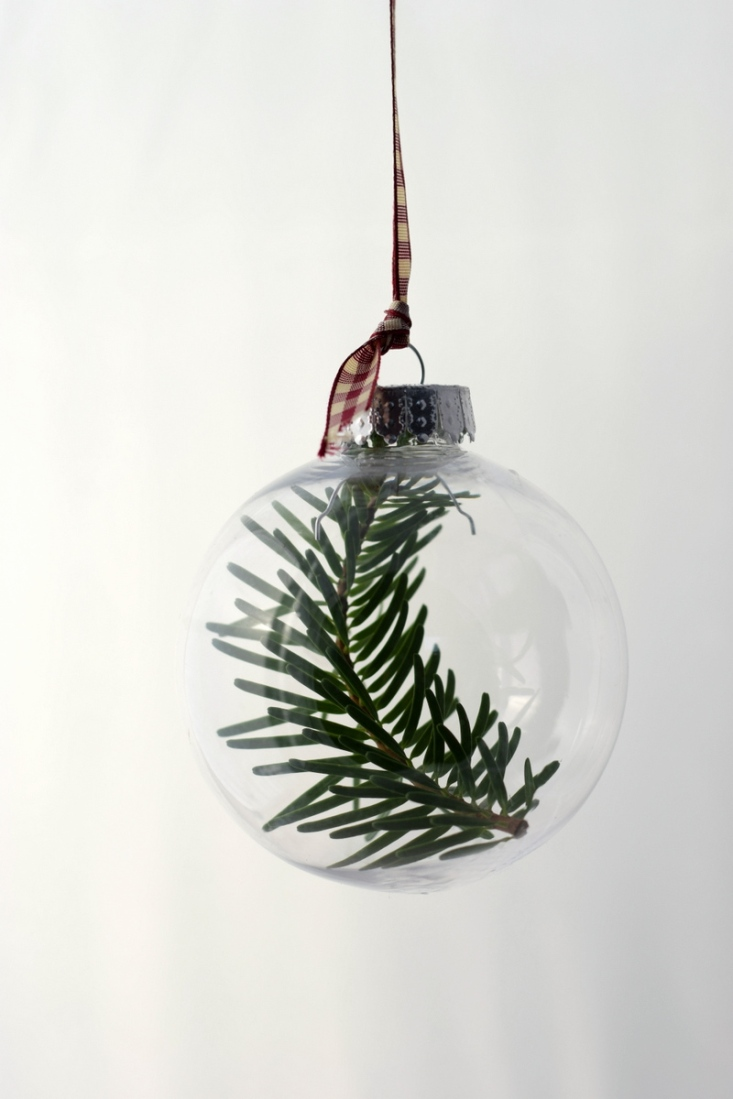 Nordman fir Christmas tree in bauble