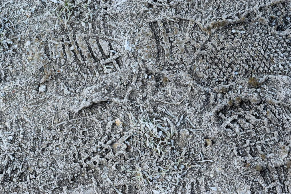 footprints in frost