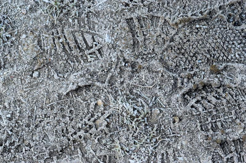 footprints in frost