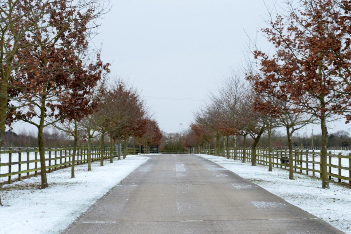 Slamseys Farm drive