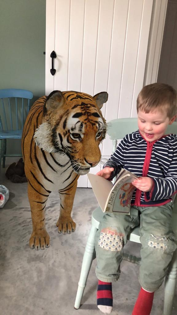 tiger looking over small boy's shoulder as he reads The Tiger Who Came to Tea