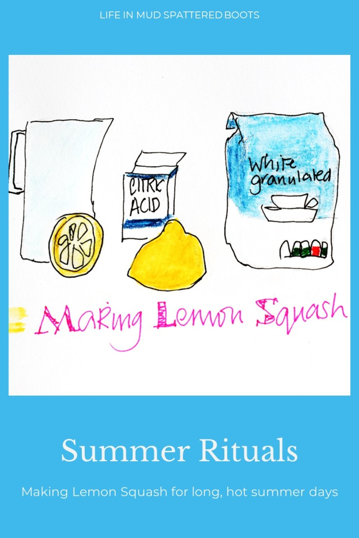 Making lemon squash drawing