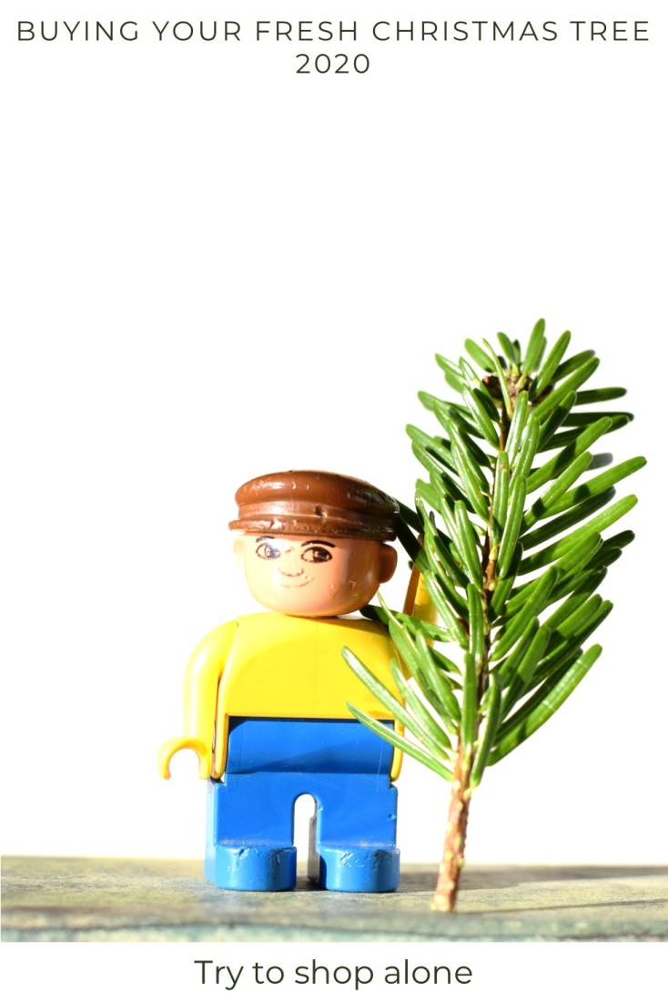 Duplo man holding Christmas twig. Shop alone 2020