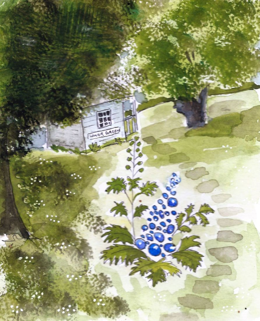 Letterbox Art Collaboration circles to delphiniums
