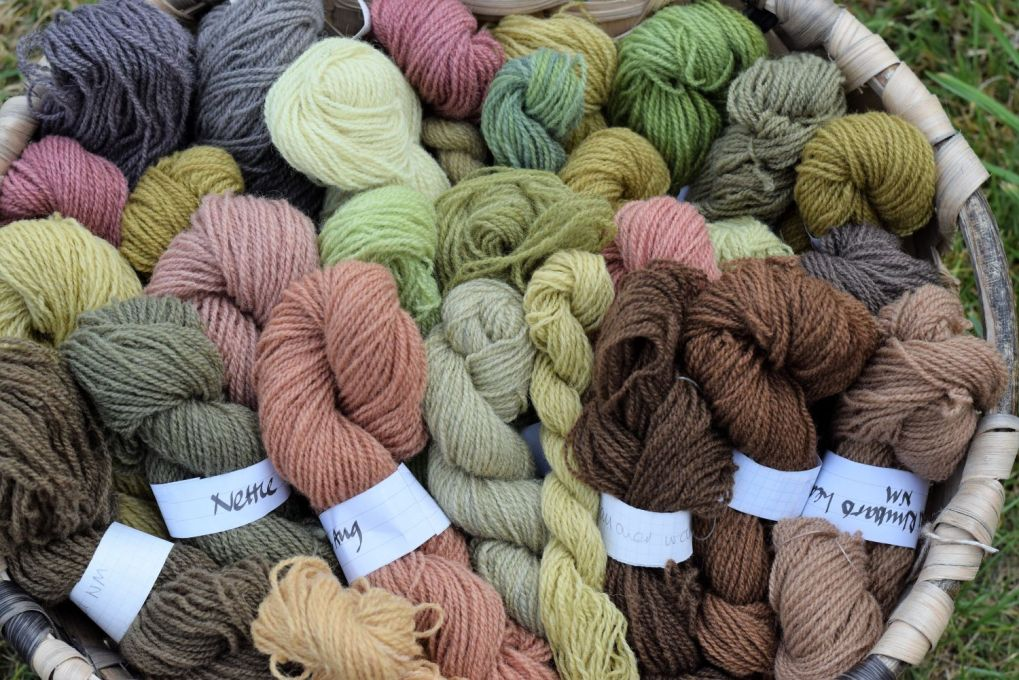 skeins of naturally dyed wool
